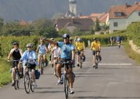 Austria - The Danube Cycle Path - Group Cycling Holiday Photo