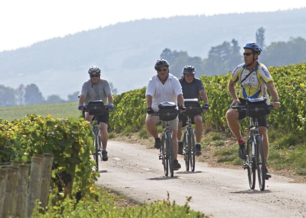 France - Burgundy Vineyards - Group Cycling Holiday Thumbnail