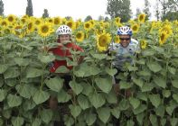 France - Chateaux of the Loire - Cycling Holiday - Self Guided Image